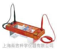 巴罗克bioigix  电泳槽(配70x100 和70x70两块制胶板)  03-3070 03-3070