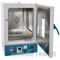 新疆电热鼓风干燥箱101-1A 101-1A