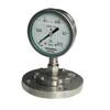 Y-100BF/Z/MF不锈钢隔膜压力表