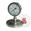 Y-100BF/Z/MF(B)/316,全不锈钢隔膜压力表 Y-100BF/Z/MF(B)/316