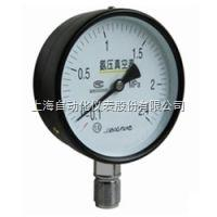 YZS-102YZS-102双针双管压力表