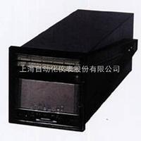 XQD1-300上海自动化仪表六厂XQD1-300 小型长图记录仪