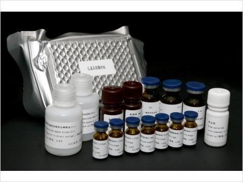 禽Elisa脑脊髓炎试剂盒,(AE)Elisa试剂盒Kit厂家