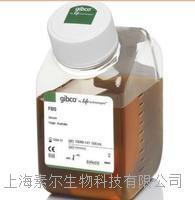 16010159胎牛血清(GIBCO)  16010159胎牛血清