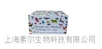 人流感抗原(influenza Ag)ELISA试剂盒 人流感抗原(influenza Ag)ELISA试剂盒
