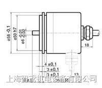 RSF ELEKTRONIK通用型旋转编码器DG 116 DG 116