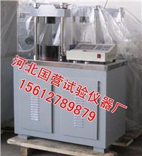 水泥恒荷压力试验机 DYE-300型