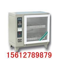 磚瓦泛霜箱 ZFX—10A型