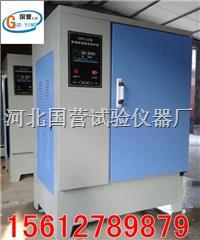 水泥試塊標準養護箱 SHBY-40B