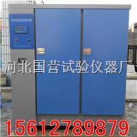 水泥試塊標準養護箱 SHBY-60B