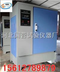 混凝土标准养护箱 SHBY-40