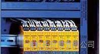 经销TURCK 图尔克安全光栅检测方式 NI4-DSU35TC-2Y1X2/S933