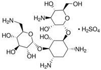 卡那霉素 PHR1487