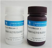 ECL化学发光试剂盒 0164