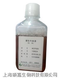 新生牛血清(優級) NCP500