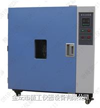 老化试验箱 LH-100