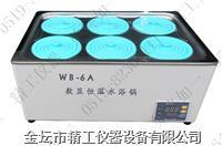 智能恒温水浴锅 WB-6A