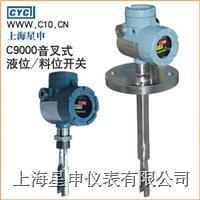 音叉式液位/料位开关 CYC900