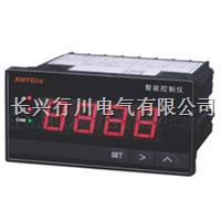 多路USB接口温度记录仪 XMTHJ3238R