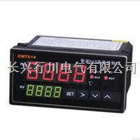 多段可编程温湿度控制器 XMT9007-8P8