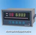 温度巡检控制仪 XSL8