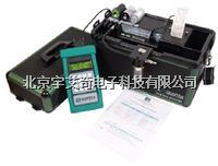 综合烟气分析仪 YI--9106