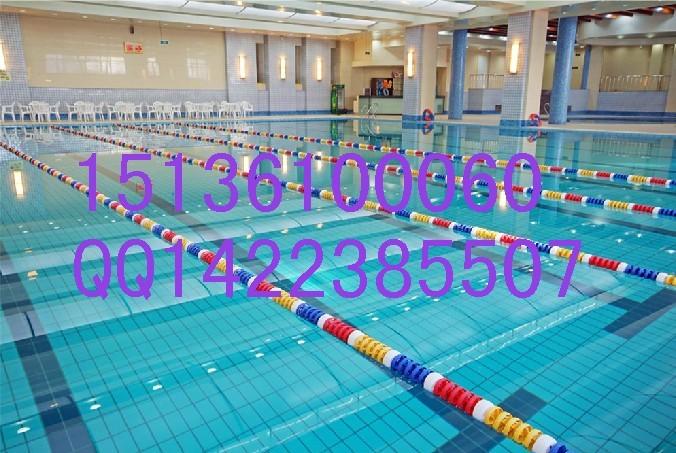 中国东营别墅游泳池水处理设备设计方案 中国东营别墅游泳池水处理设