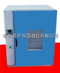 鼓风干燥箱 DHG-9624A