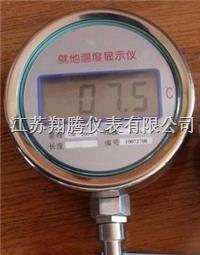 就地温度显示仪 XTW