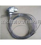 多点热电偶 WRN-230D/WRE-230D/WRN-430D/WRE-430D