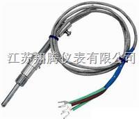 压簧式固定热电偶 WRET-01/WRNT-01