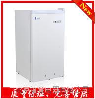 -20度小容积低温冰箱 -20度小容积低温冰箱