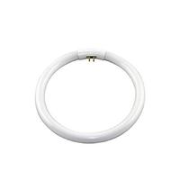 欧司朗 T5 C 三基色环形荧光灯 22W G10q灯头