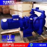 上海博生DBY-40型电动隔膜泵 不锈钢电动隔膜泵 铸铁电动隔膜泵