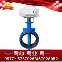 精小型电动蝶阀 D971XP