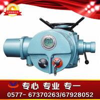 电动执行器 一体化调节型