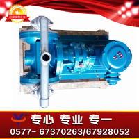 不锈钢电动隔膜泵DBY电动隔膜泵304电动隔膜泵 DBY-P