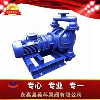铝合金电动隔膜泵 DBY-GY