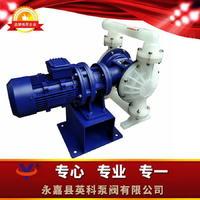 塑料电动隔膜泵耐酸碱工程塑料隔膜泵PP塑料四氟隔膜泵 DBY-PP