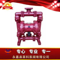 衬氟气动隔膜泵 QBY