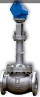 Fluval低温闸阀,截止阀和止回阀 Cryogenic