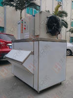 0.6吨鳞片冰制冰机、降温保鲜制冰机 ICE-600kg