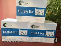 人白介素1α(IL-1α)试剂盒
