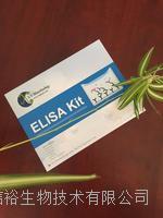 人半胱氨酸蛋白酶抑制剂(CSTA)试剂盒
