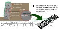 欢迎光临//吉林生态袋(集团--股份有限公司)欢迎您!18954852688 齐全