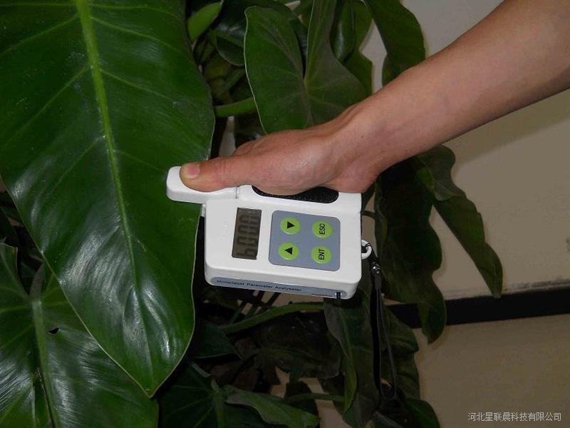 河北星晨植物氮测量仪XC-D6厂家直销