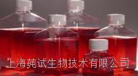中国蓝琼脂平板(9cm)厂家 CS-P1092