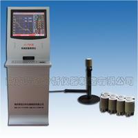 LC-TS6型炉前铁液质量管理仪
