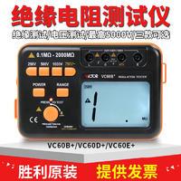 VC60B/+防雷绝缘电阻测试仪,防雷检测设备,防雷检测设备清单 VC60B/+