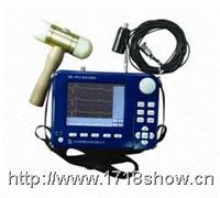 ZBL-P810数字式基桩动测仪 ZBL-P810